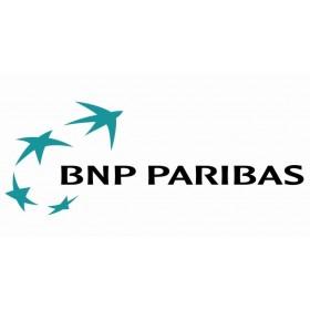 Module Sips Atos Evolution BNP Paribas avec installation
